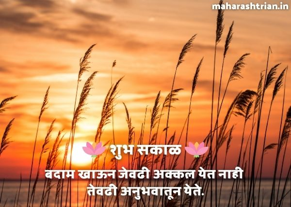 fresh good morning marathi sms